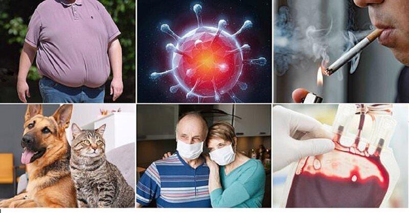 Кому коронавирус страшнее всего?