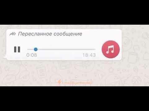 """""""Радости"""" дистанционного обучения"""