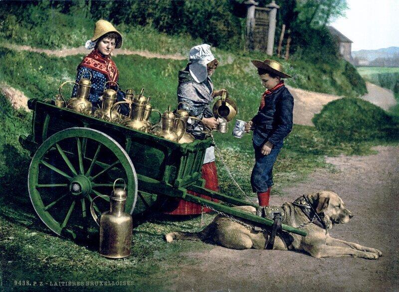 Цветные фотографии из 1880-х