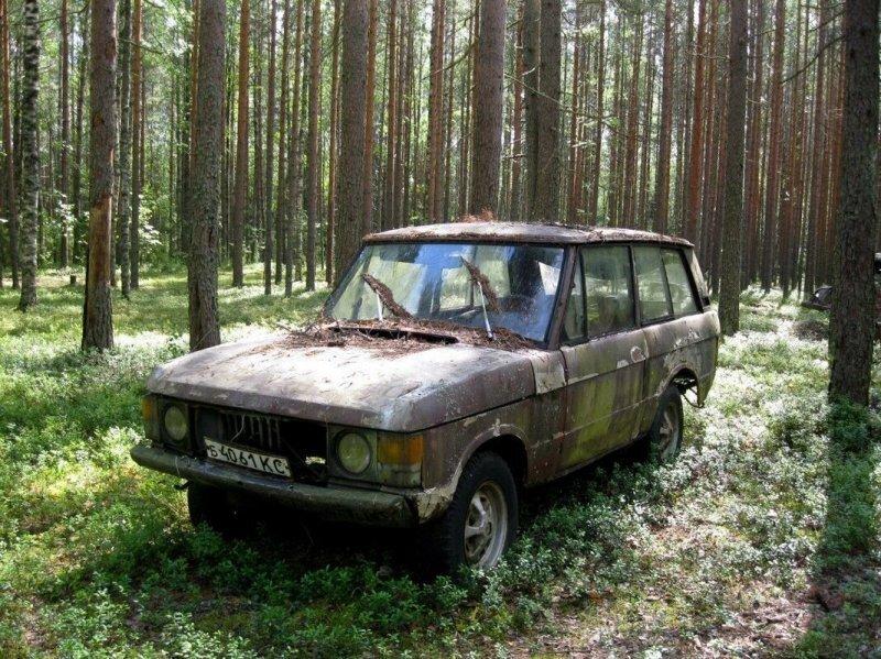 Range Rover на советских номерах в карельском лесу