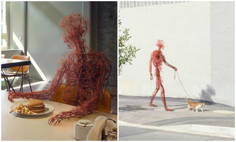 """""""Человек, несмотря ни на что"""": проект о жизни нашей кровеносной системы"""