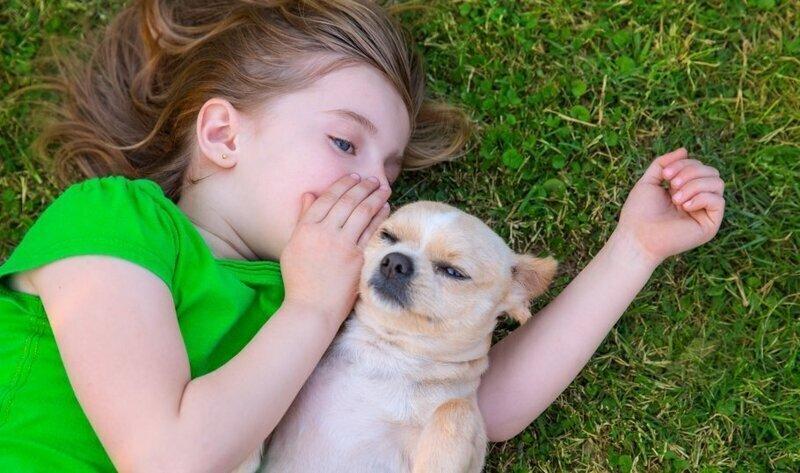 Собака – лучший друг ребенка: как уговорить родителей завести питомца