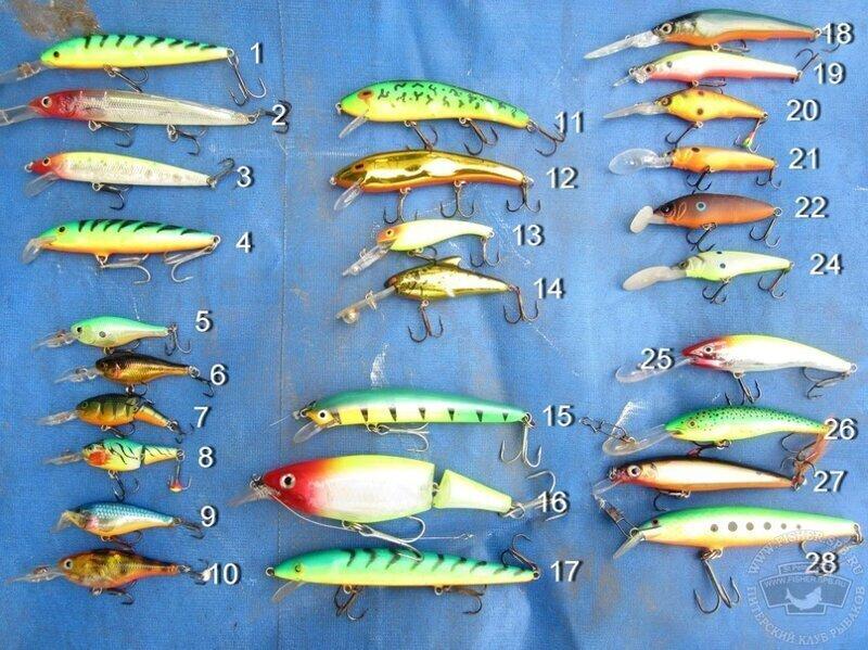 Троллинговая рыбалка техника ловли для начинающих от А до Я