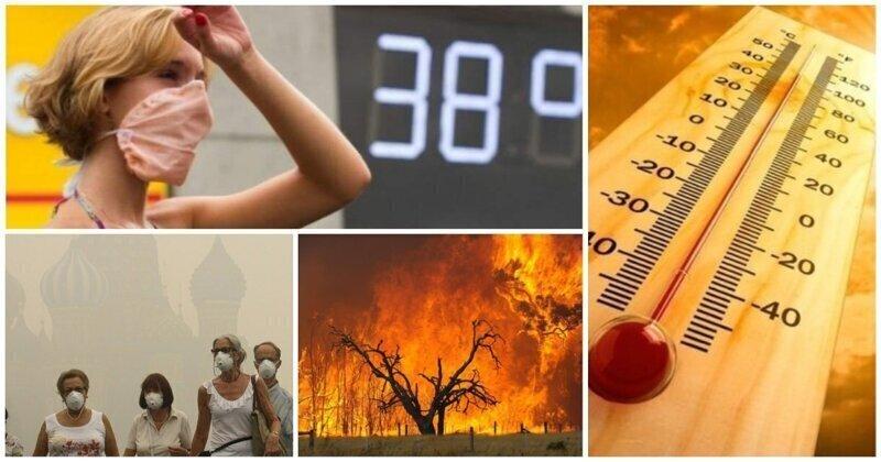 Потеют все: прогноз аномальной жары в России