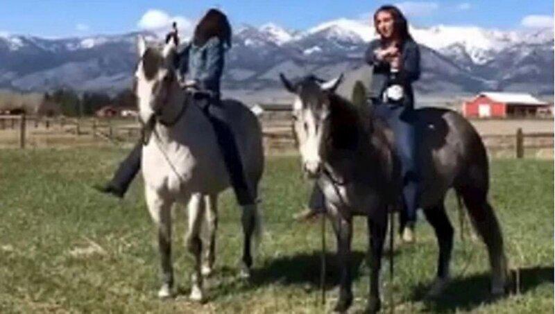 Почему не стоит открывать шампанское, сидя на лошади