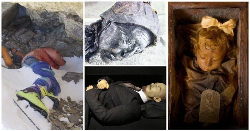 """Самые """"долгоиграющие"""" трупы: ТОП мумий на которые пялятся годами"""