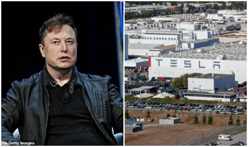 """""""Арестуйте меня"""": Илон Маск открыл завод Tesla вопреки запретам"""