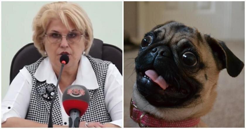 Мэр Алушты пожелала сдохнуть собакам нарушителей самоизоляции