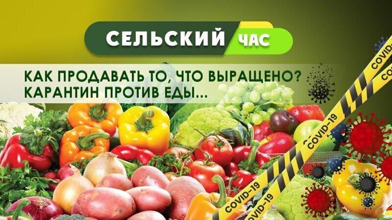 Как фермерам продавать то, что выращено? Карантин против еды. Сельский час #4