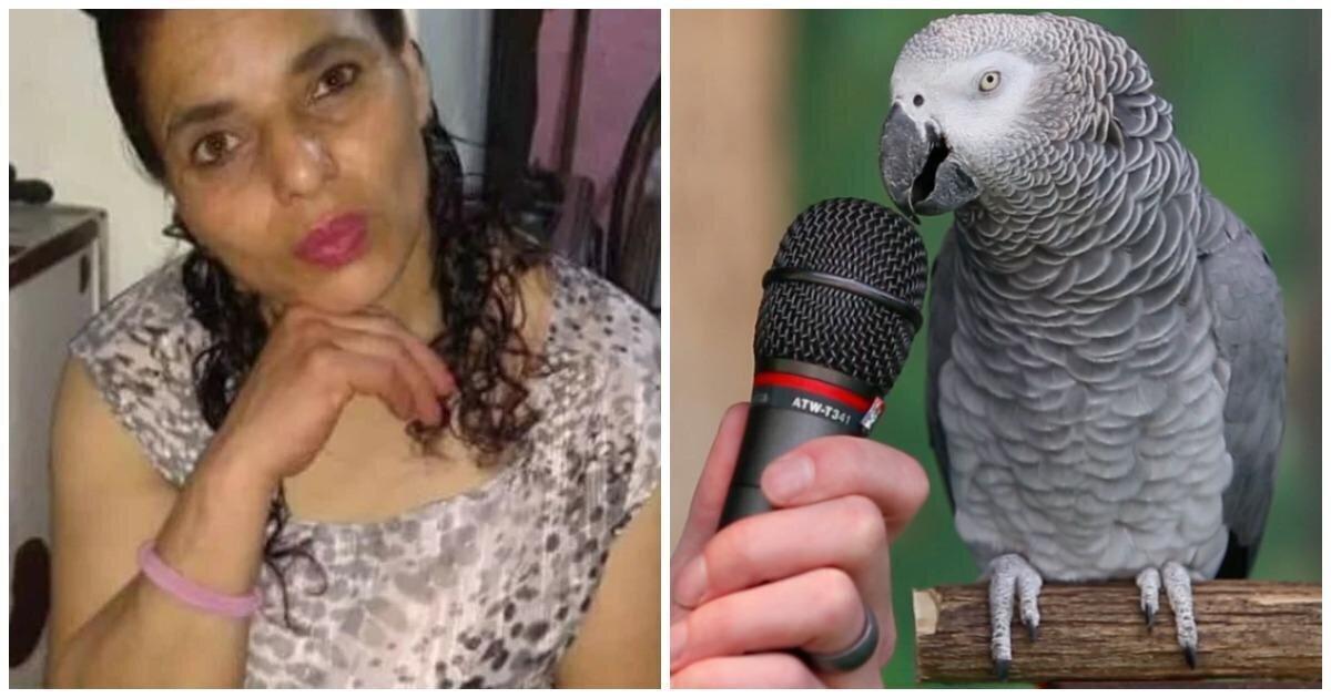 В Аргентине главным свидетелем в деле об убийстве выступил попугай