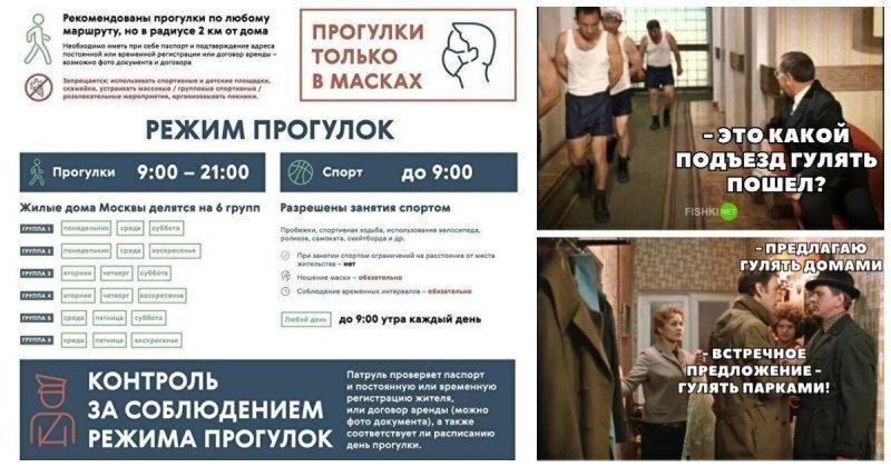 После эксперимента москвичи будут готовы ходить строем и гулять определенными группами по графику