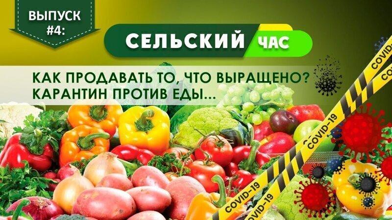 Как фермерам продавать то, что выращено? Карантин против еды