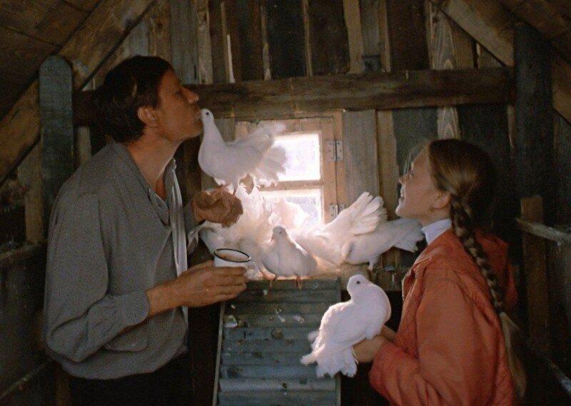 В чём главный смысл фильма «Любовь и голуби»?