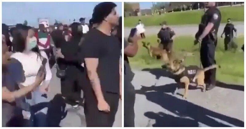 Полицейская собака сделала кусь протестующему