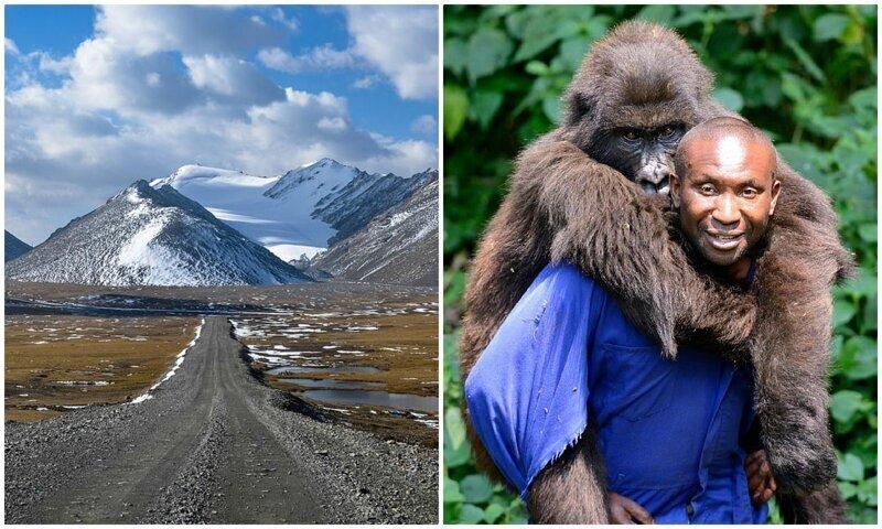 Как путешествовать, заботясь о дикой природе?