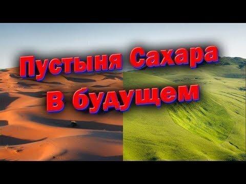 Пустыня Сахара и Зеленая стена Африки.  Озеленение пустыни Сахары