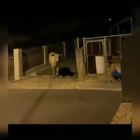 Обычный вечер в Индии