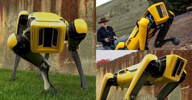 Boston Dynamics начала продажу робособаки Spot