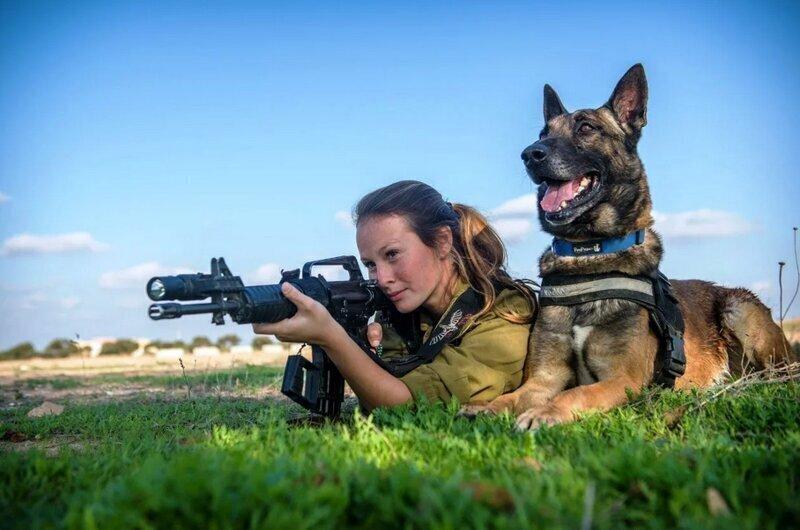 Военные дрессировщики и их служебные собаки - история помнит
