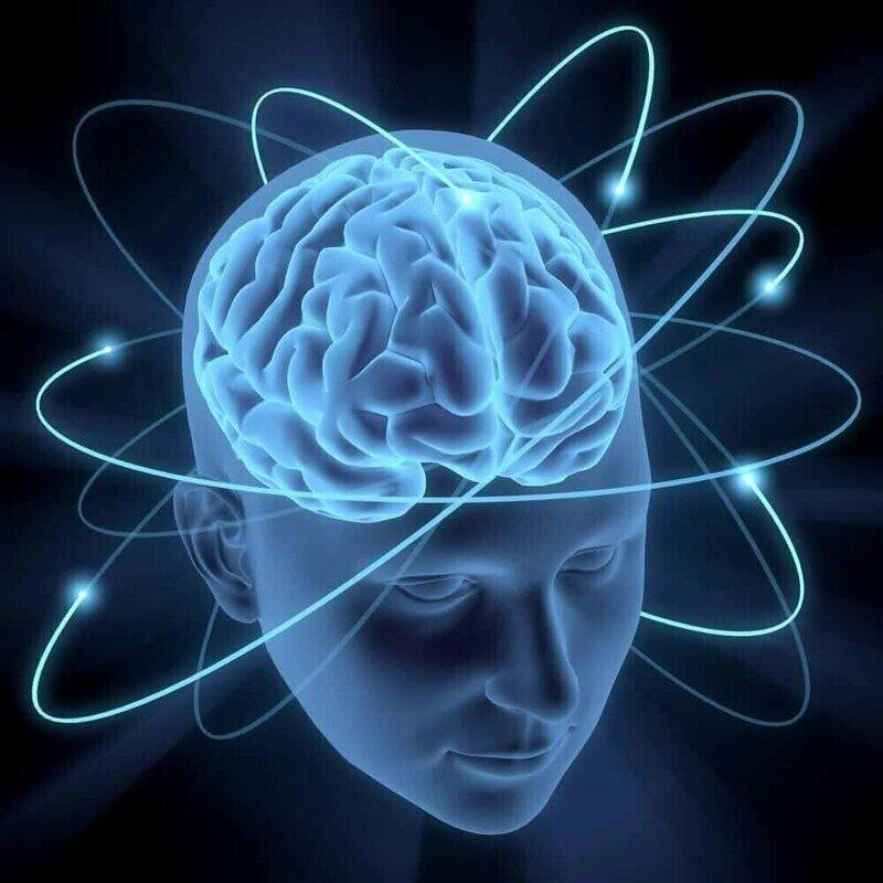 8 способов тренировать свой мозг, чтобы учиться быстрее