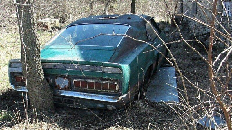Посмотрите как умирают легенды: Shelby GT350 и кабриолет Camaro