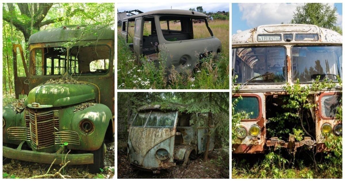 20 автобусов которые умирают на своей последней остановке