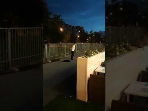 Наркоман устроил странные танцы в Веселом Поселке (видео)