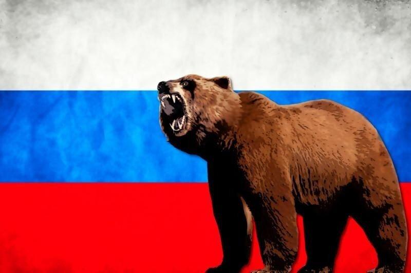 Как медведь по ошибке стал символом России