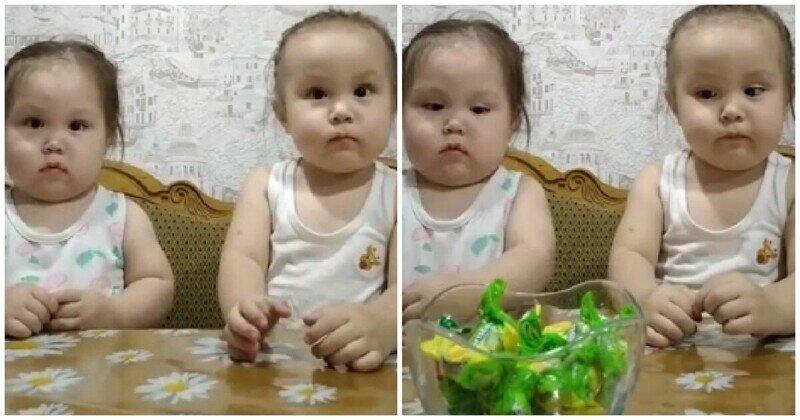 Сила воли и сладости: девочки поборолись с желанием съесть конфеты втайне от мамы