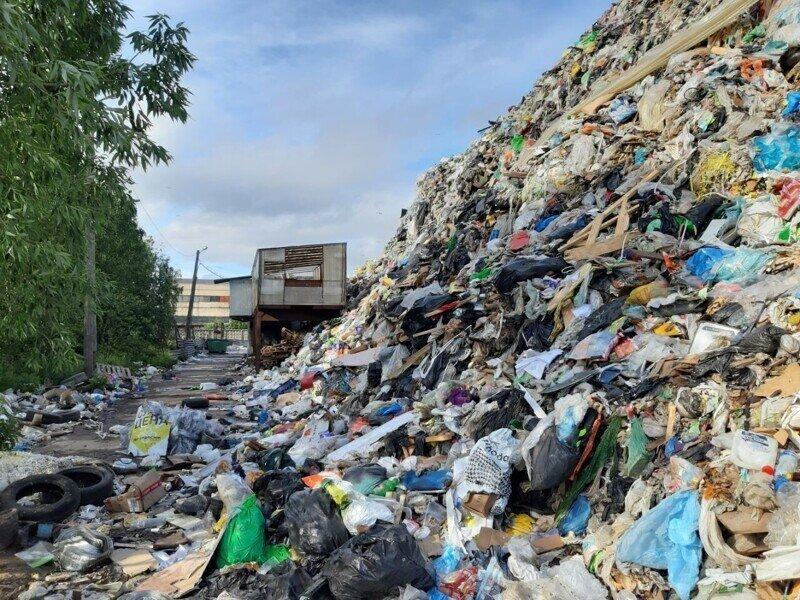 Чем больше денег, тем больше гора мусора в Янино