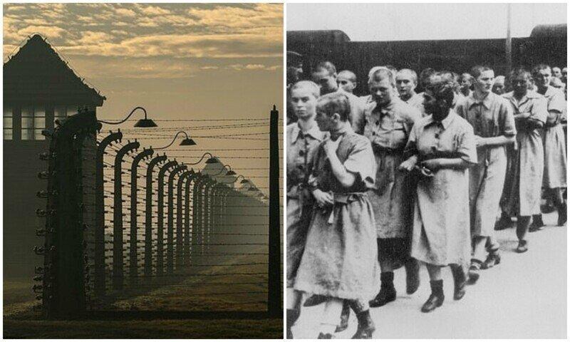 Социологов огорчили скудные знания американцев о Холокосте