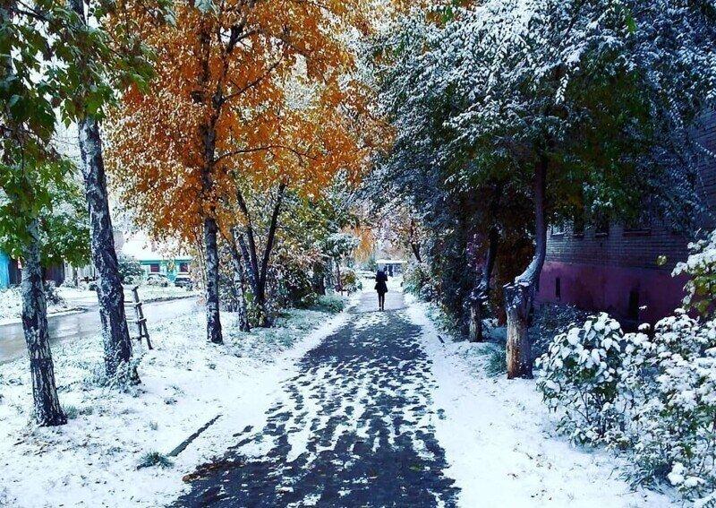 Кузбасские коммунальщики победили траву под первым снегом