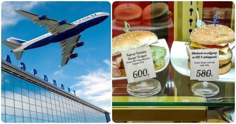 Цена на еду в столичном аэропорту: личный опыт, как не отдать кучу денег и не умереть от голода