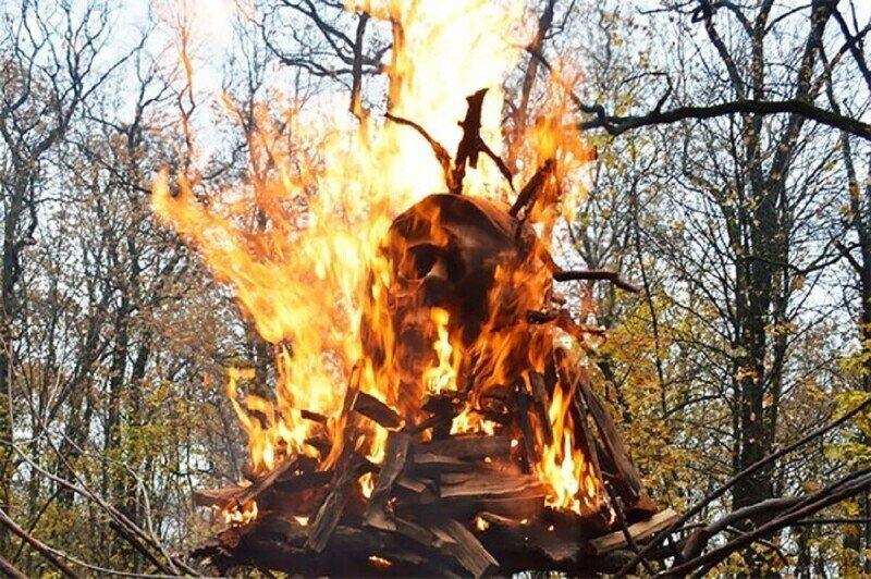 В Воронеже сожгли чучело коронавируса