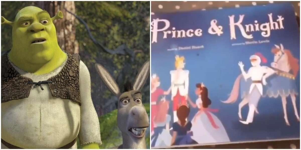 """""""Моим матам нет предела"""": женщина нашла книгу, где рыцарь спасает принца от дракона"""