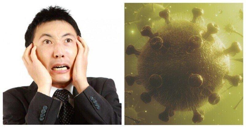 Приграничный карантин и куриные конечности: свежие попытки коронавируса вернуться в Китай
