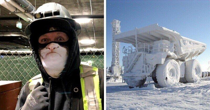Подборка фото, которые показывают, как сурова зима