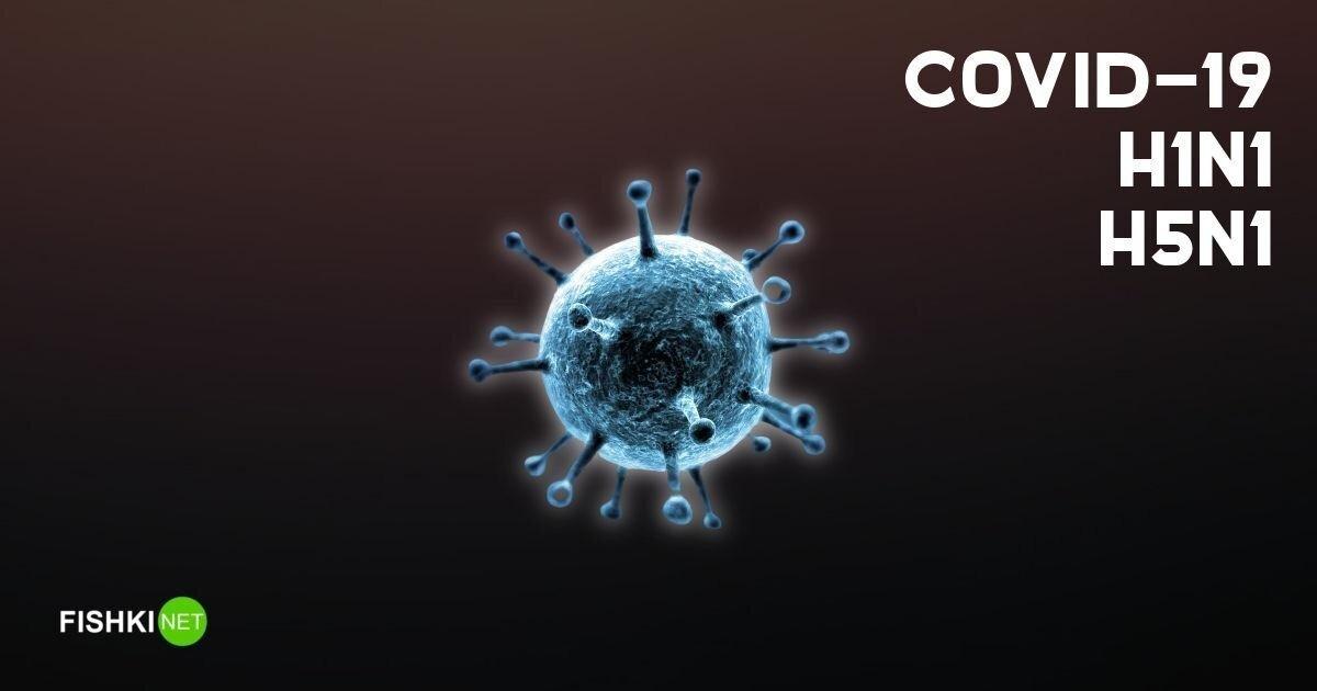 Сравниваем летальность COVID-19 и гриппа