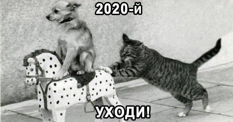 2020, уходи! Как пандемия изменила мир за год