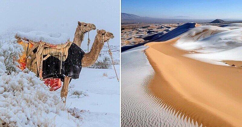 Пустыня Сахара покрылась льдом, а в Саудовской Аравии выпал снег