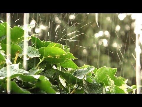 Алексей Таранов - Капли дождя (Транс)