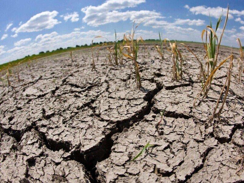 По прогнозам ученых, к 2100 году человечество столкнется с экстремальной засухой