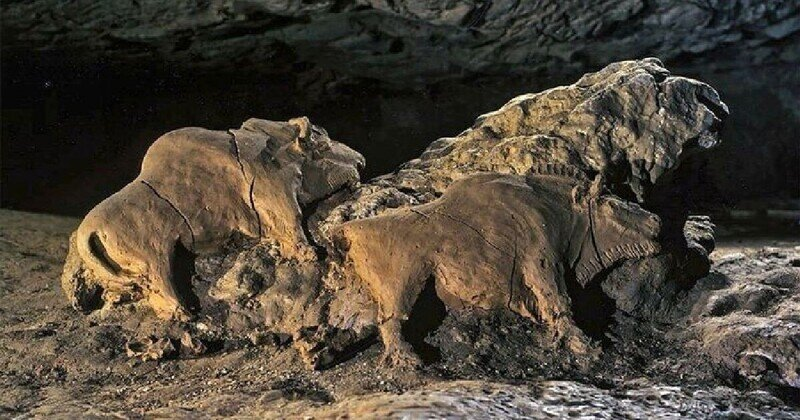 Глиняные зубры возрастом 15 000 лет - прекрасно сохранившийся памятник позднего палеолита
