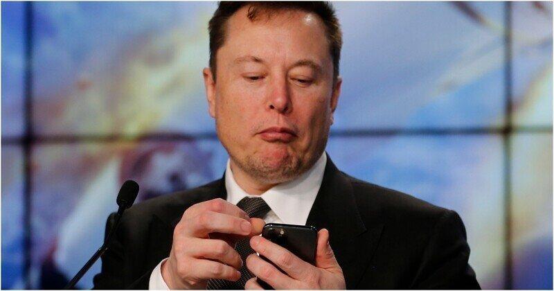 Началось: Илон Маск чипировал обезьяну