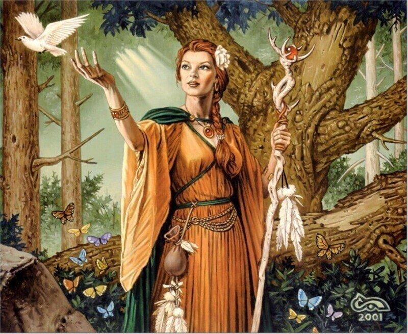 Ведьмин Дар