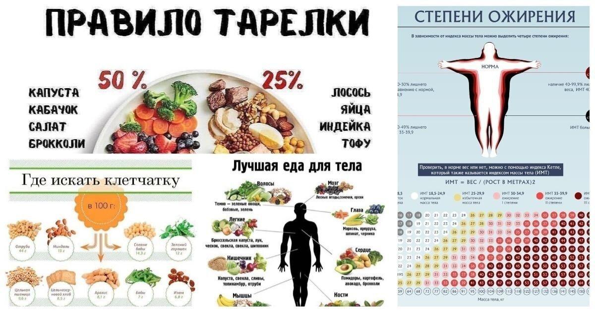 30 важных шпаргалок для здорового питания: читай, если решил изменить жизнь