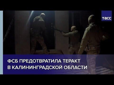 ФСБ задержала готовившего в Калининградской области теракт россиянина