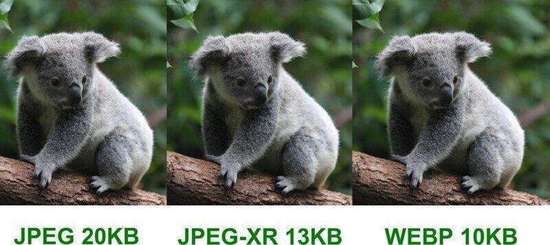 Что такое формат изображения WebP (и почему это важно знать)?