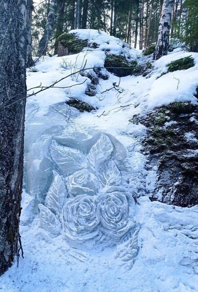 Лесничий в Монрепо создал к 8 Марта ледяные розы