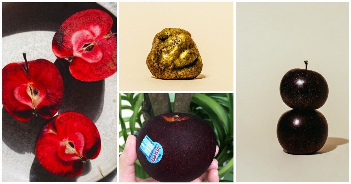 20 сортов яблок, вид которых вас поразит